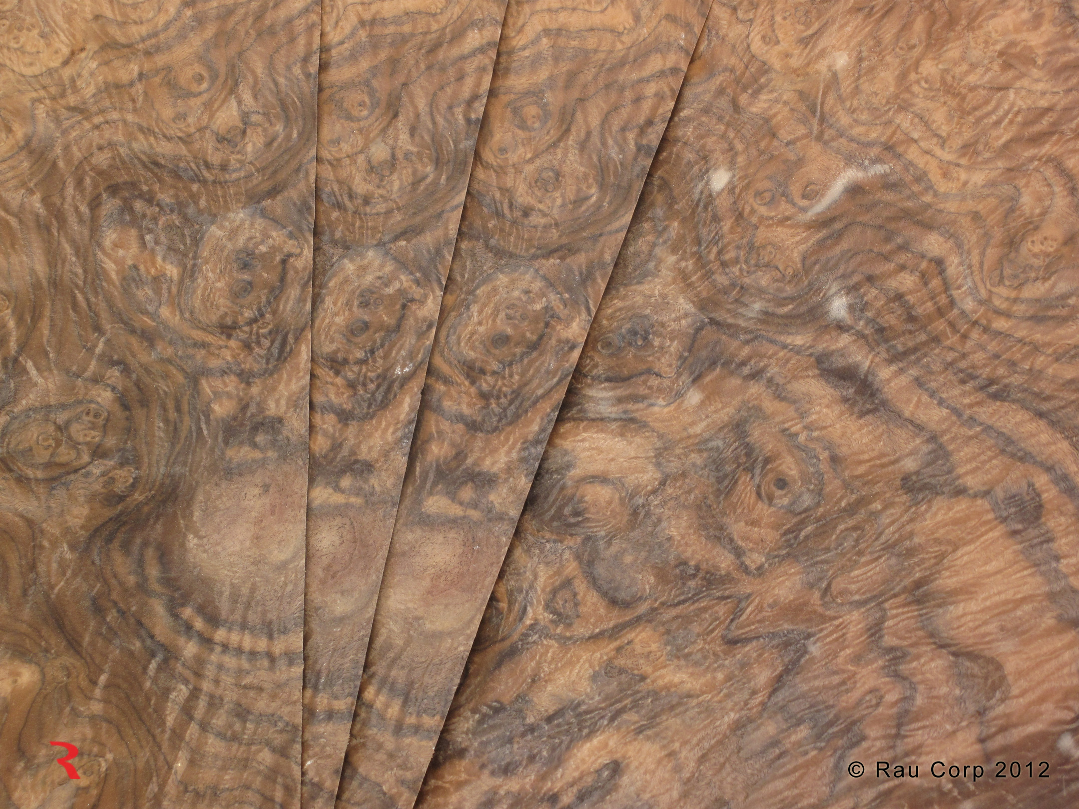 Walnut Veneer Roll Walnut Burl Veneer