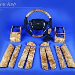 Rover olive ash 8x10 FRISCO book